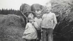 Høyonn i ca. 1940