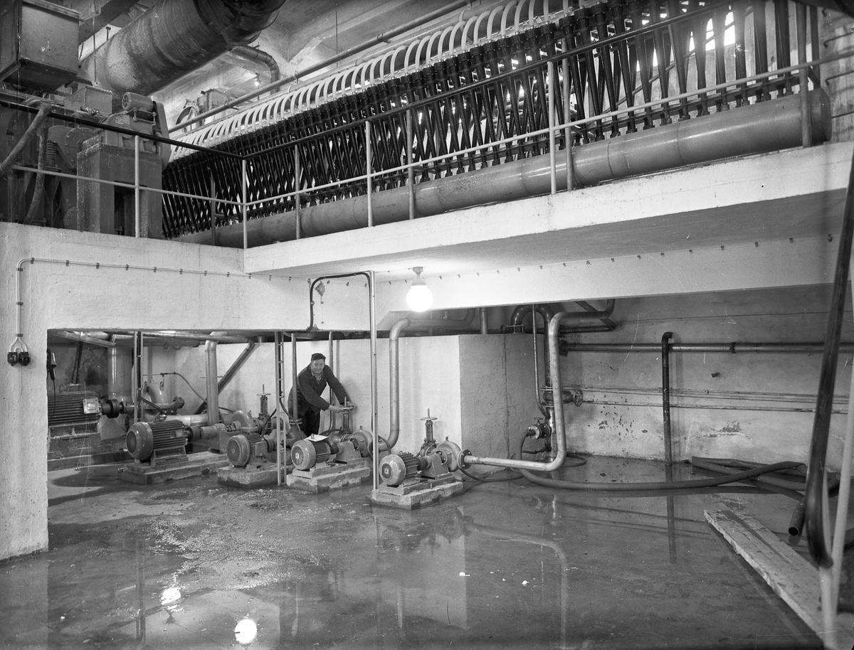 Fra Bønsdalen. Einar Tyskerud på bildet. Fra cellulosefabrikken.