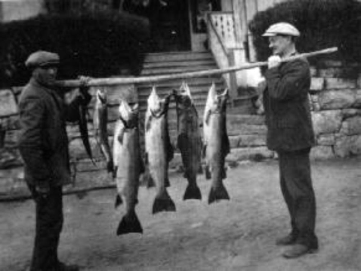 To menn med fiskefangst på stokk foran føderådsbygningen på Vinju, Ringsaker. Seks store ørret. Gardbruker Johannes Winju f. 1874 til høyre. Den andre mannen er ukjent.