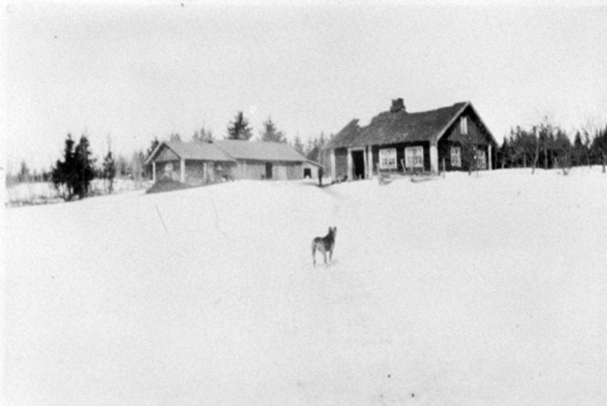 Husmannsplassen Ekeberg på Hoel gård, Nes, Hedmark.